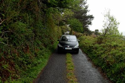 Guide on driving on narrow roads